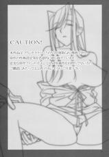 (C77) [Hito no Fundoshi] Admired Beautiful Flower 2 (Princess Lover!)(CN)-(C77) [ひとのふんどし] Admired beautiful flower 2 (プリンセスラバー!)